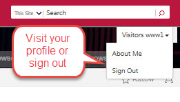 After signing in, visit your profile or sign out from the Sign In button.